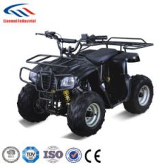 Chinese Atv 2004 Chevy Silverado 1500 Stereo Wiring Diagram China 110 Manufacturers Suppliers Made In Com