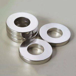 China N35 NdFeB Ring Magnets For Speaker China Magnet