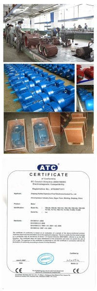 China Three-Phase Induction Electrical Motor for Water ...