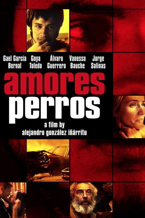 Key visual ofAmores Perros
