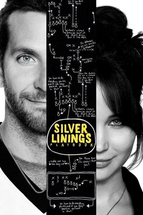 Key visual ofSilver Linings Playbook