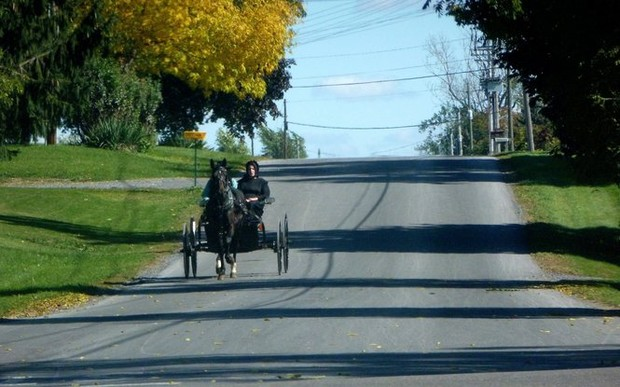 Where To Buy Amish Products In Upstate Ny 7 Tips For