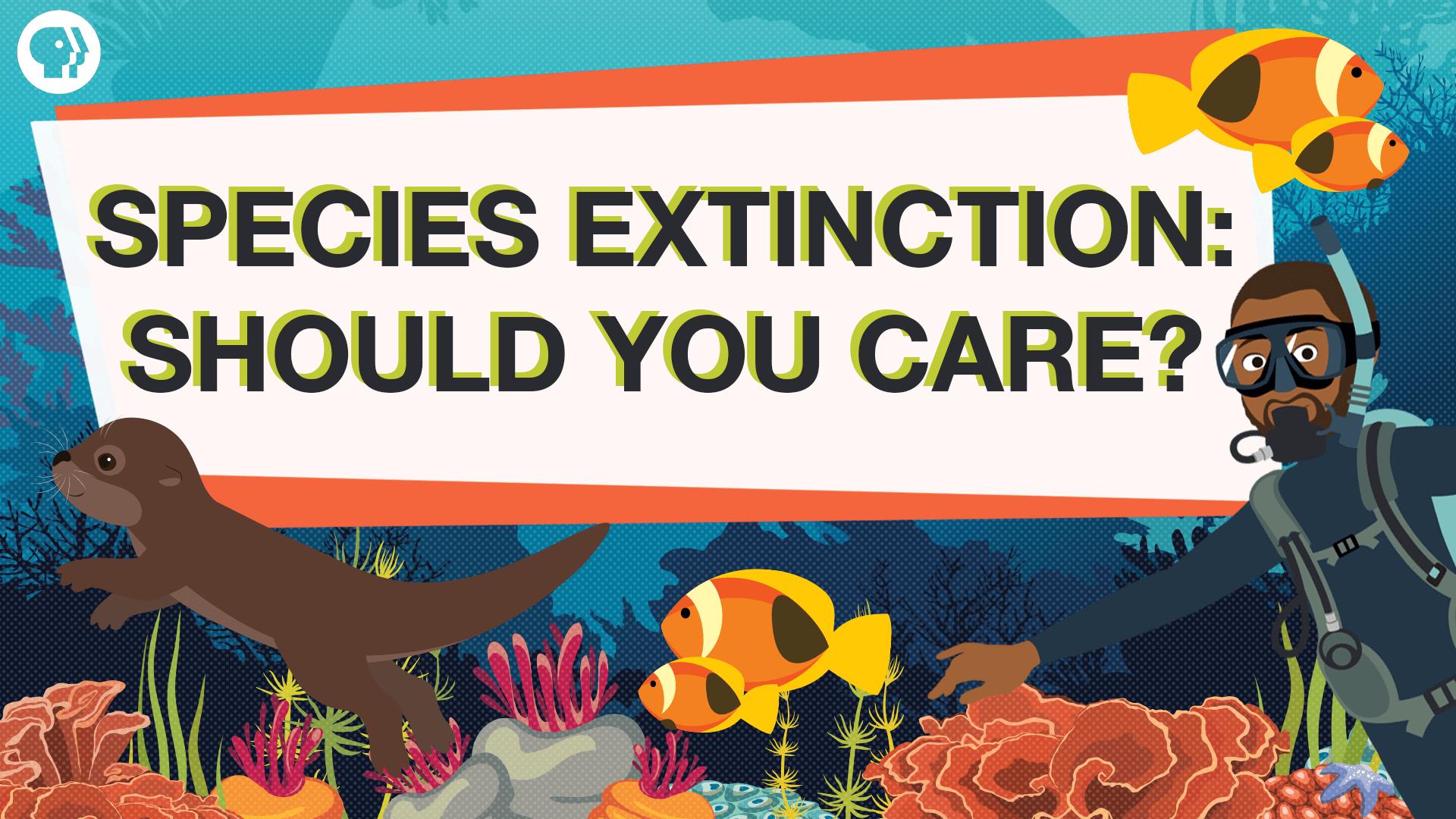 Endangered Species Worth Saving From Extinction