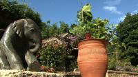 Video: Henry Doorly Zoo Special | Watch Backyard Farmer ...