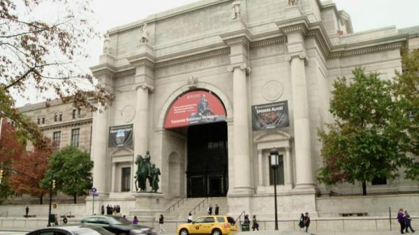 American Museum Of Natural History Treasures York