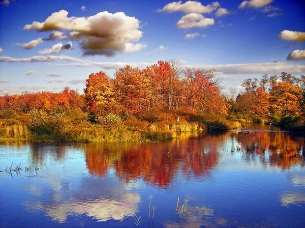 Free Fall Screensavers And Wallpaper Poconos Guide Where To Stay What To Do During Your Fall