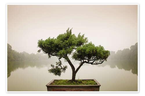 poster bonsai japonais dans un jardin zen