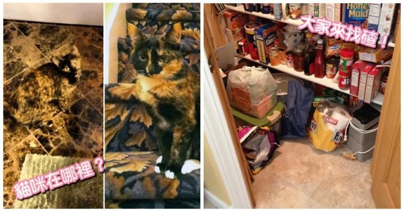 大家來找碴!貓咪躲貓貓,網傳一幅名為「困惑的狐貍」(The Puzzled Fox)的百年畫作。這幅畫作是1872年的作品,鏟屎官一起來挑戰~ | CatCity 貓奴日常