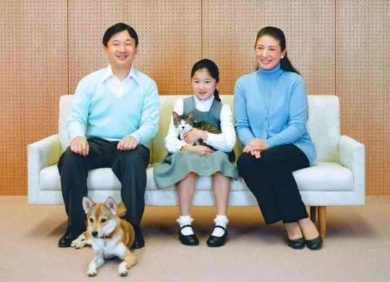 【日本天皇】皇室寵物全部係流浪貓狗 雅子皇后支持領養代替購買 | HolidaySmart 假期日常