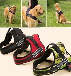 details about sports dog harness set nylon padded adjust working trainning pitbull husky boxer [ 1005 x 1005 Pixel ]
