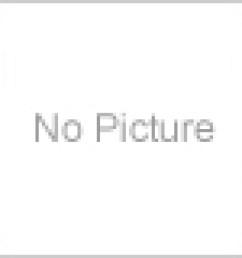 auto choke wiring on vw bug wiring electric chock carburetor 113129031k w gasket fits vw volkswagen [ 1300 x 1300 Pixel ]