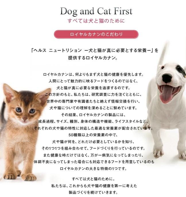 【ロイヤルカナン 成犬用】マキシアダルト 15kg 大型犬・成犬用 生後15ヵ月齢から5歳未満 【正規品】【送料無料】