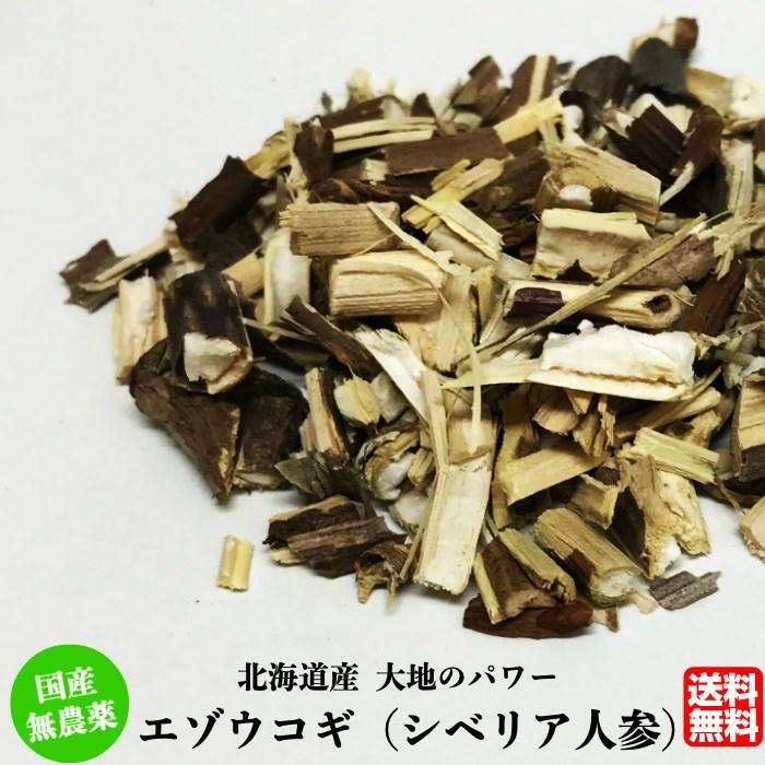 【楽天市場】<送料無料>北海道産 エゾウコギ茶100g(シベリア ...