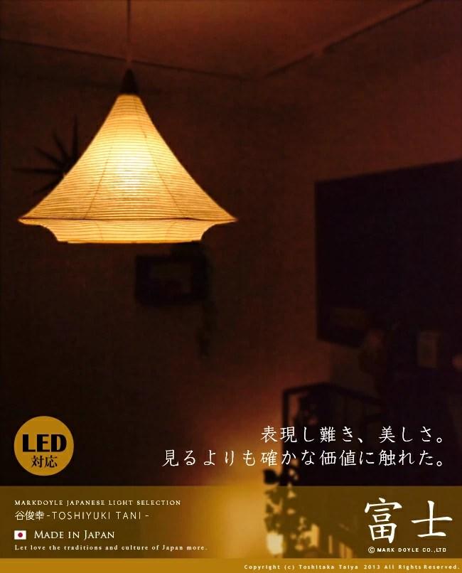 L5 Light Bulb