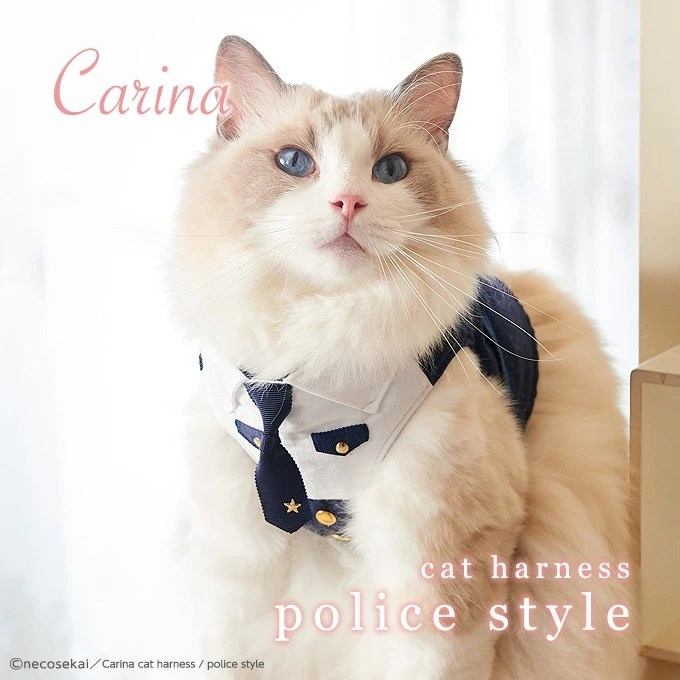 最良かつ最も包括的な 貓 ハーネス 手作り - 新しい壁紙HD