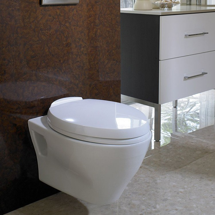 kitchen sink protectors hotels with kitchens in portland oregon buy toto ct418fg#01 aquia wall mounted dual flush ...