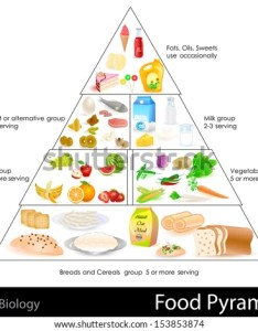 Easy to edit vector illustration of food pyramid chart also royalty free keto nutrition and  rh avopix