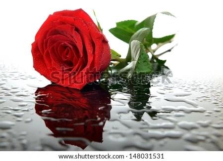 Mawar Berduri Di Dalam Diri Jejak Jejak Yang Terserak