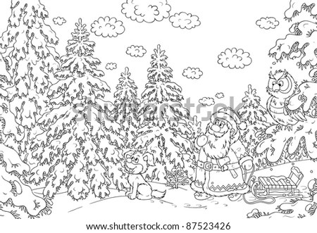 In Snow-Covered Forest Santa Claus Looks For A Fir That Is