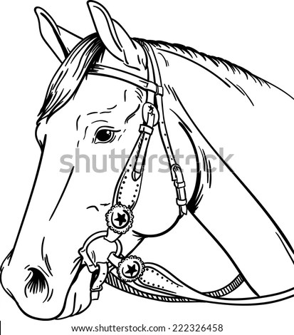 Royalty-free Horse head / vintage illustration from