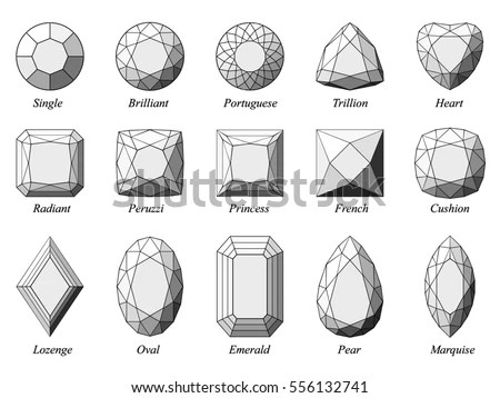 Vector illustration set of various… Stock Photo 555642310