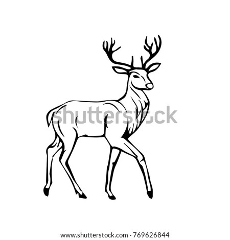 Royalty-free Deer and doe. Outline vector… #475378099