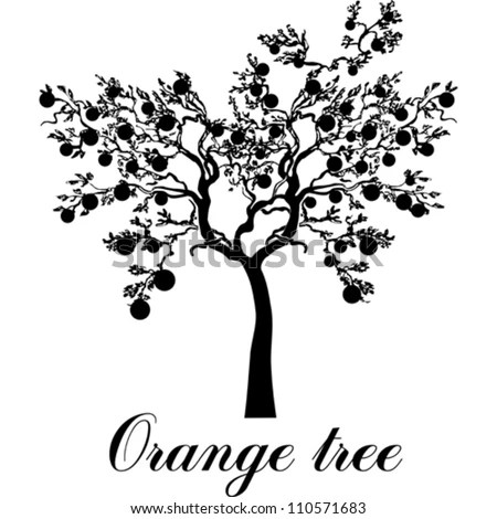 Orange Tree Wallpapers