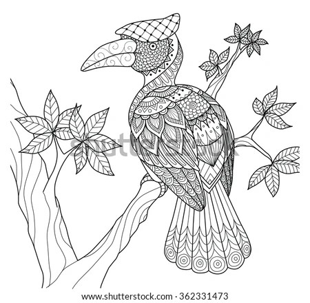 Hornbill Bird On The Tree Zentangle Design For Coloring