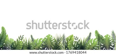 Free download tropical leaf transparent clipart. Garden Bamboo Forest Plant Green Leaves Branches Forest Border Clipart Stunning Free Transparent Png Clipart Images Free Download