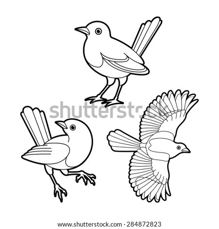 Three Magpie Birds In Black Outline Stock Vector