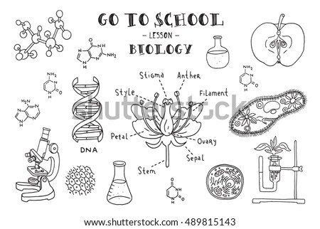 Biology. Hand sketches on the theme of… Stock Photo