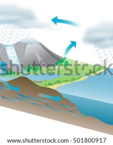 vector illustration showing water cycle also free diagram download art stock rh vecteezy