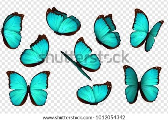 Butterflies On Transparent Background Butterflies Butterfly Clipart Transparent Stunning free transparent png clipart images free download