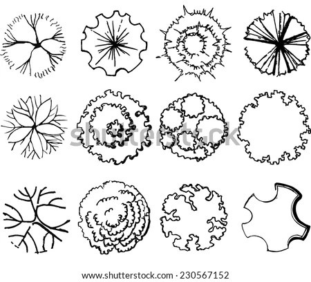 A set of treetop symbols, for… Stock Photo 232367845