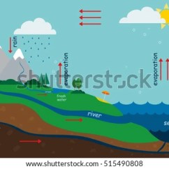 Labelled Diagram Of Water Cycle Wiring For Wall Socket Free Vector Download Art Stock Illustration The In Nature