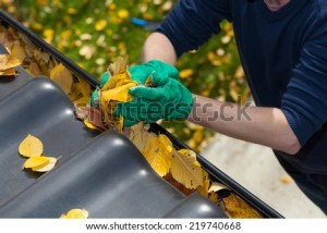 A man clearing leaves off a rain gutter