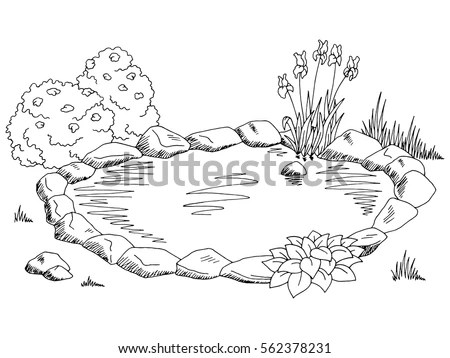 Vector Images, Illustrations and Cliparts: Pond graphic