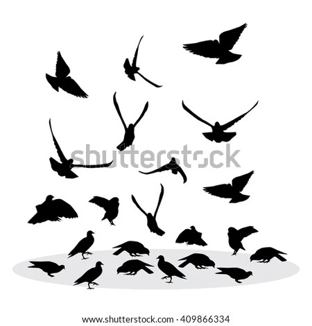 Royalty Free Stock Photos and Images: Flock of feeding