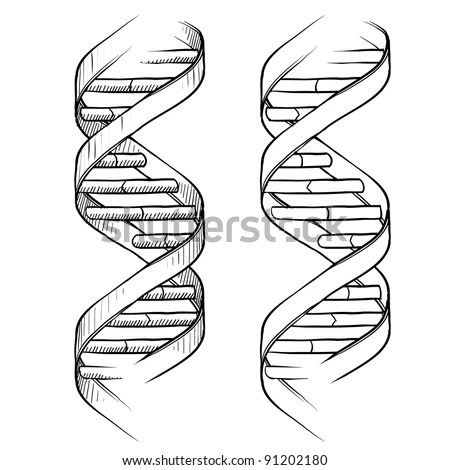 Doodle Style Genetic Dna Double Helix Illustration In