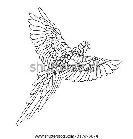 Macaw Parrot Coloring Page. Birds. Black White Hand Drawn