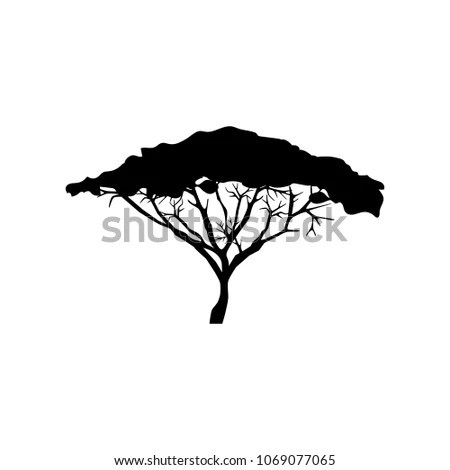 Acacia tree silhouette raster Stock Photo 68778790