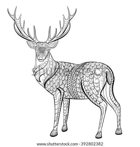 Deer. Hand drawn deer for adult anti… Stock Photo