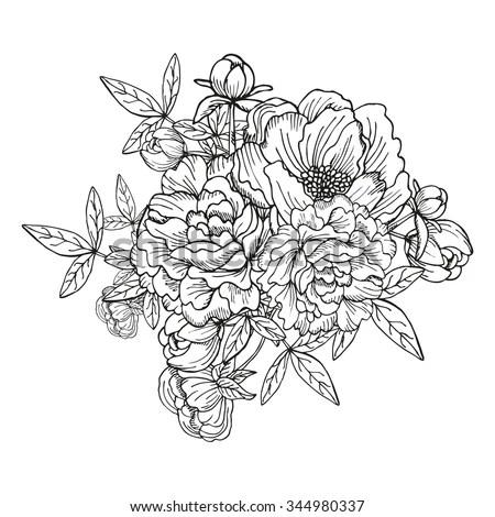 Jasmine flower. Vintage elegant flowers… Stock Photo