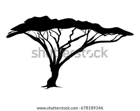 Royalty-free Acacia tree silhouette raster #68778790 Stock