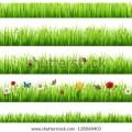 Grass frame border 187 thpho com stock photos amp vectors