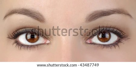 https://i0.wp.com/image.shutterstock.com/display_pic_with_logo/479380/479380,1262004351,7/stock-photo--two-eyes-43487749.jpg