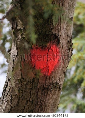 stock photo : A painted heart on the trunk