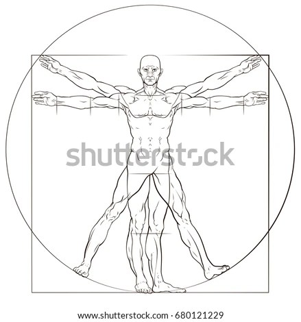 The Vitruvian man. Detailed drawing on… Stock Photo