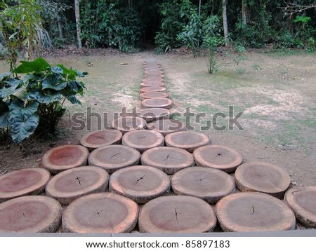 Wood stumps for footpath landscaping, Amazon rainforest, Peru - stock photo