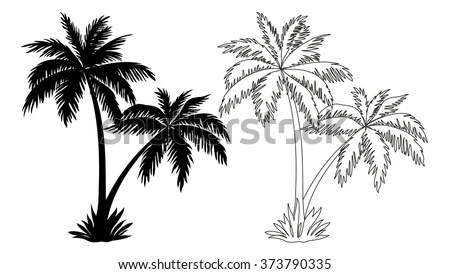 Vector Images, Illustrations and Cliparts: Tropical Palm